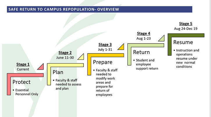 graphic of Mason's first five return to campus stages